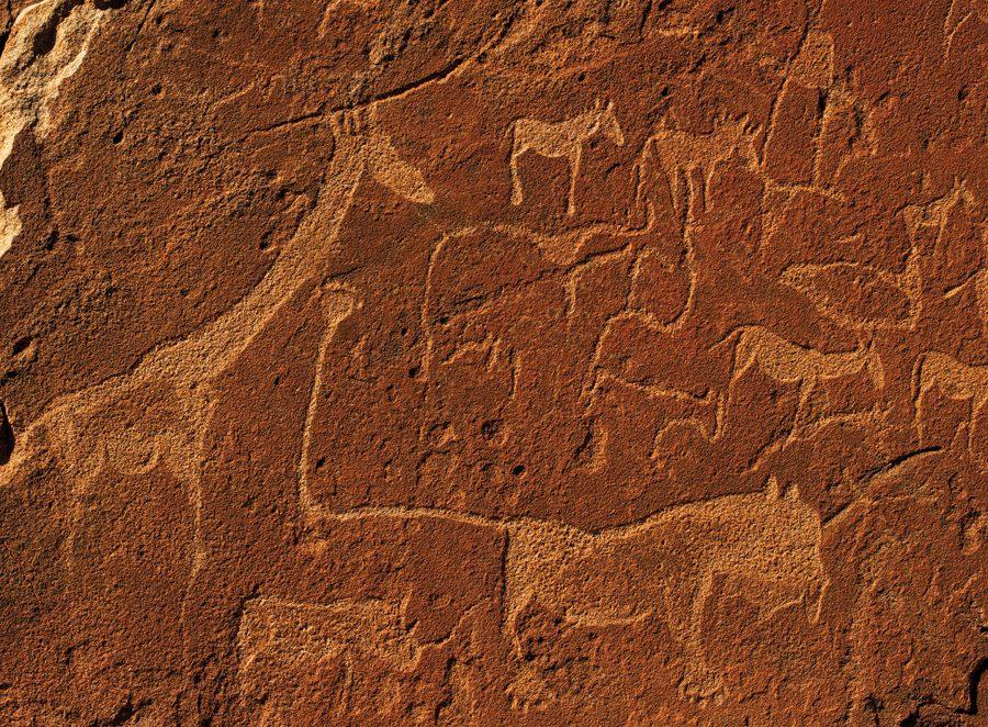 Twyfelfontein rock engravings, Paul van Schalkwyk.