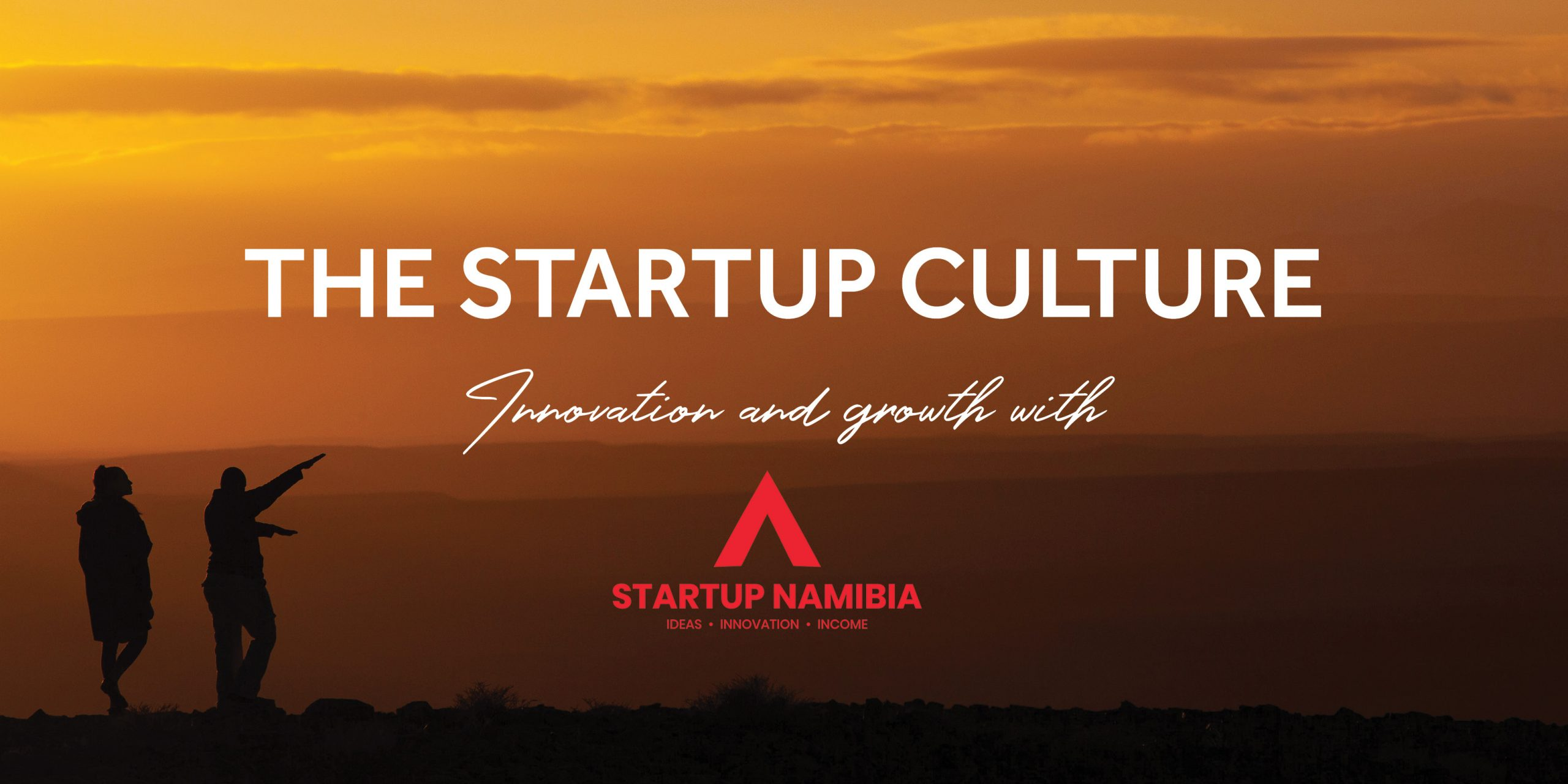 startup namibia banner